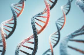 Genetisch defect