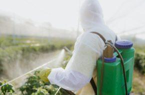 pesticiden, b-cellymfoom